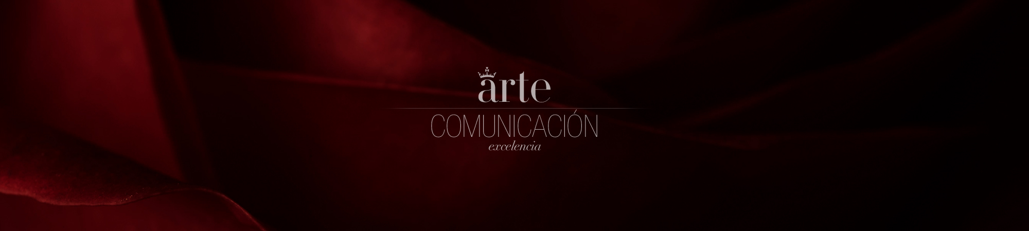 Umbradanza, diseño web Madrid