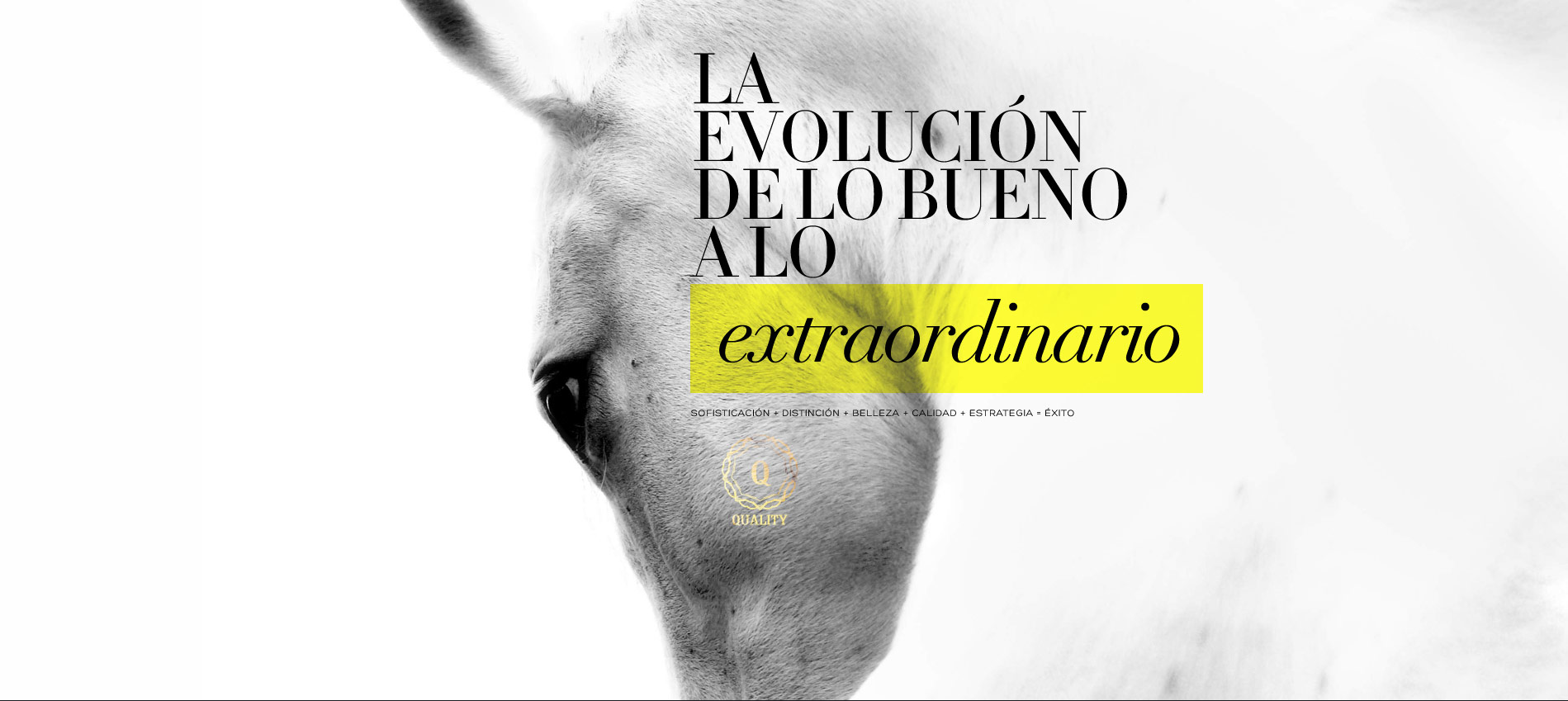 Umbradanza, agencia de branding e identidad corporativa, Madrid
